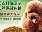 超好吃的狗粮。狗狗的最爱