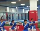 专业体能培训,跆拳道,现代武术,散打等,周日可免费体验试课