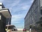 平阳宋桥工业区二楼厂房1800平米出租适合各行各业