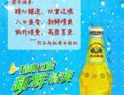 北京燕京啤酒(晋中)有限公司加盟 名酒