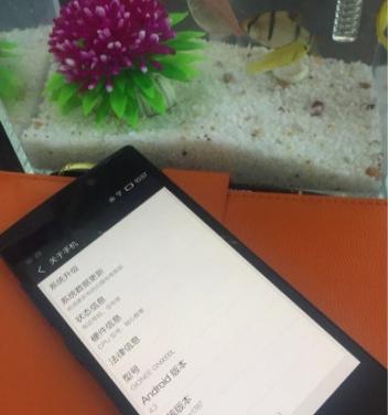金立S5.5超薄移动4G智能手机