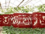 蔬菜雕塑实时报价_农业生态园雕塑公司