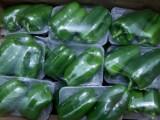 郑州无公害新鲜蔬菜集装箱