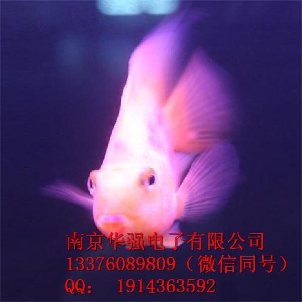 9bfaa13e7b9db9412092f150a58aa013.jpg
