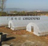 北京塑料大棚价格  质优价廉 施工迅速