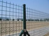 贵州六盘水荷兰网低价出售厂家直销专业生产