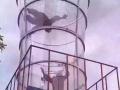 海洋球 风洞 蜂巢迷宫 智勇闯关等大型展具出租出售
