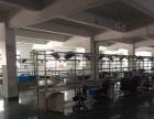 蜀山街道蜀山路边2楼2200平高4米电子行业入驻