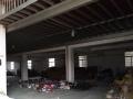 仓库3800价格低上下楼 高5米 可以短期出租