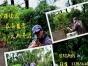 惠州大亚湾旅游绿间野炊-真人CS-出海捕渔攻略大全