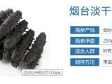 信达雅淡干红参优质供应商,海参高性价比,可信赖