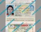 半年出境 移民加拿大住家保姆