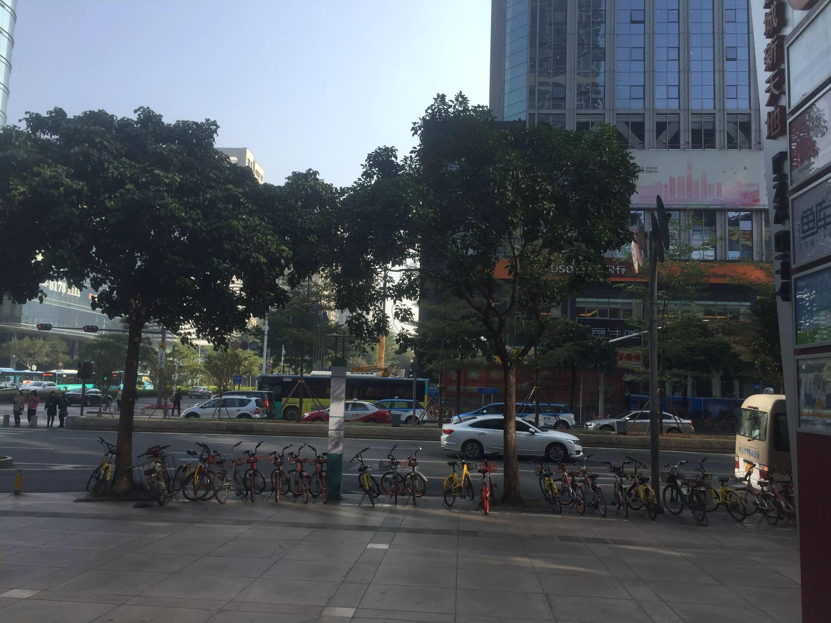 出租福田中心区豪宅片区,大型商业综合体,可分租,无行业限制