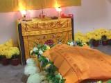 宠物火化 宠物殡葬 宠物墓园
