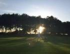 天安假日高尔夫俱乐部预定试打