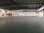江门高新区标准厂房1100平方米出租,可分租,电大