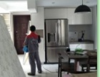深圳杀虫公司专业灭跳蚤灭老鼠 灭蚊虫 灭臭虫 灭苍蝇 捷控