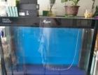 一米二大鱼缸