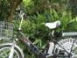 全东莞市**一家低价转让二手锂电池电动自行车电动摩托车迷你电动车