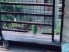 宁德-东湖豪门1室1厅-1300元
