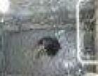 中山市横栏镇疏通厕所、疏通厨房下水道疏通各种下水道