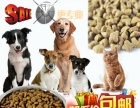 出售优质狗粮猫粮40斤装厂家直销货到付款