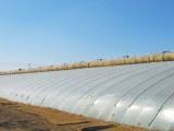 亚龙塑料价格实惠的灌浆膜供应,青州农膜