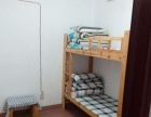 贺龙体育馆附近床位300每月起包水电网床上用品
