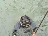 重庆专业管道封堵水下打捞管道修复作业