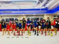 天津专业散打搏击 女子防身 少儿武术 泰拳 柔术格斗培训