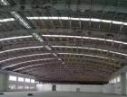 南山大型多栋钢构厂房仓库三万九千平米招租