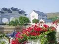 紧邻深圳 政府批准大规模经营性永久墓园 风水宝地