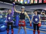 北京少儿散打班-三里屯少儿散打班-北京女子防身术