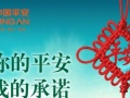 电动车意外卡 中国平安