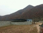 杨运林场 土地 2500平米
