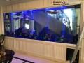 连云港大型鱼缸