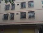白龙 朝阳路 1室 1厅 200平米 整租朝阳路