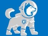 德犬智能家用安全装备加盟