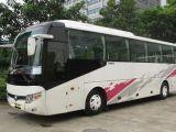客车 郑州到乌鲁木齐直达大巴车 几点发车 几小时 多少钱