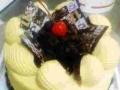 天津蛋糕裱花班/天津蛋糕烘焙培训班/短期班包教会