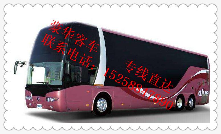 从&临海到沧州大巴车/豪华客车《15258847890+班次》线路/直达
