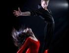 学钢管 爵士拉丁 酒吧领舞哪里好华翎舞蹈专业培训