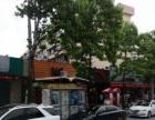 桃浦雪松路快鱼附近中心位置出租