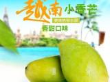 供应 越南小香芒 青芒玉芒5斤包邮新鲜水果