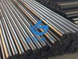 藍鯨騰飛 超高聚乙烯管