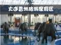大连香洲旅游度假区 香洲温泉公园 特价票 套票