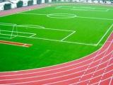 惠州硅pu球场材料 韶关塑胶跑道材料生产