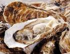 广州进口牡蛎报检标签备案时间
