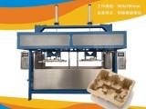 山東紙漿模塑制品生產線設備