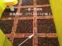 南京一塑一宅装饰上百家德系样板工地开放参观学习讲解